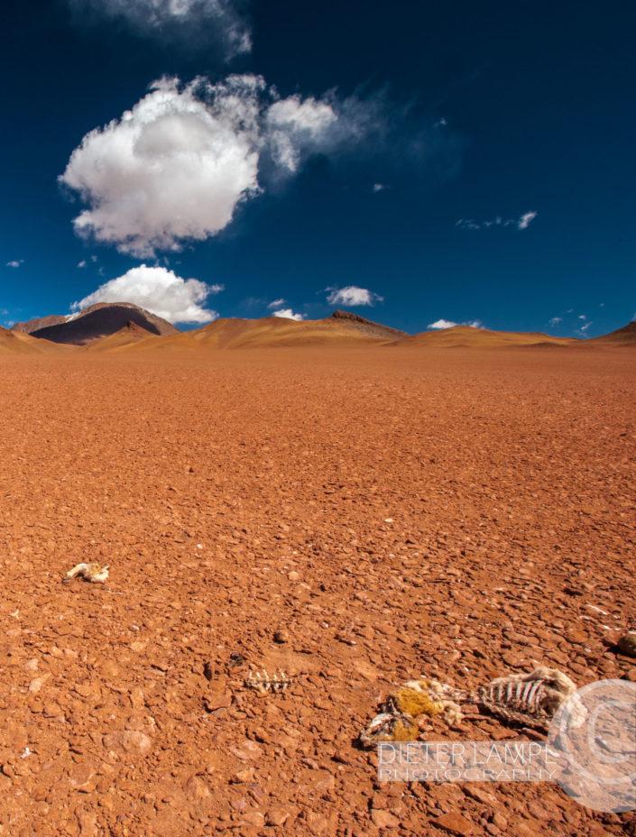 Reisefotografie durch Achtsamkeit: Atacama Wüste Chile