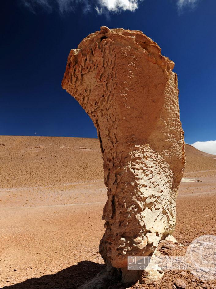 Naturfotografie von Landschaften: Salar de Tara Chile