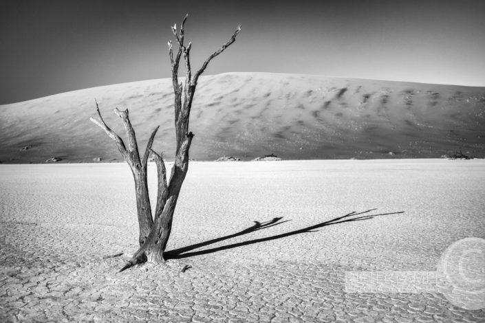 Naturfotografie von Landschaften: Deathvlei Namibien